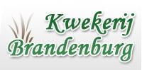 Kwekerij Brandenburg - Baflo