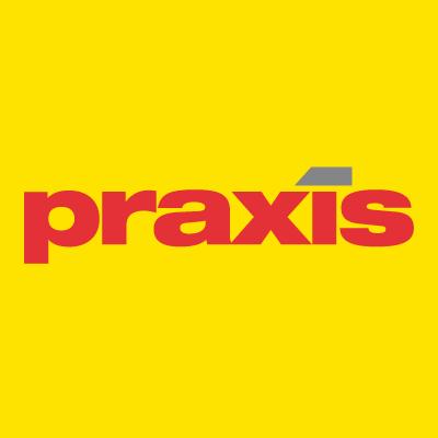 Praxis-Social-media