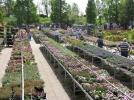 Tuincentrum Ofman - Wormer
